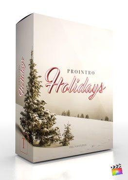 ProIntro Holidays