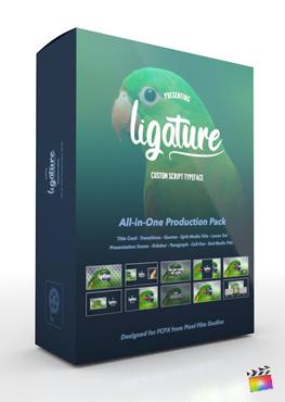 Pixel Film Studios - Ligature Production Package