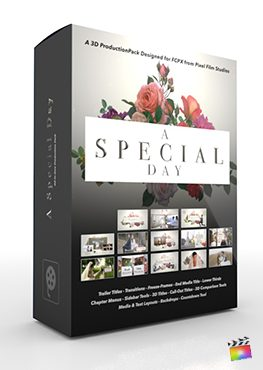 Final Cut Pro X Plugin A Special Day 3D Production Package from Pixel Film Studios